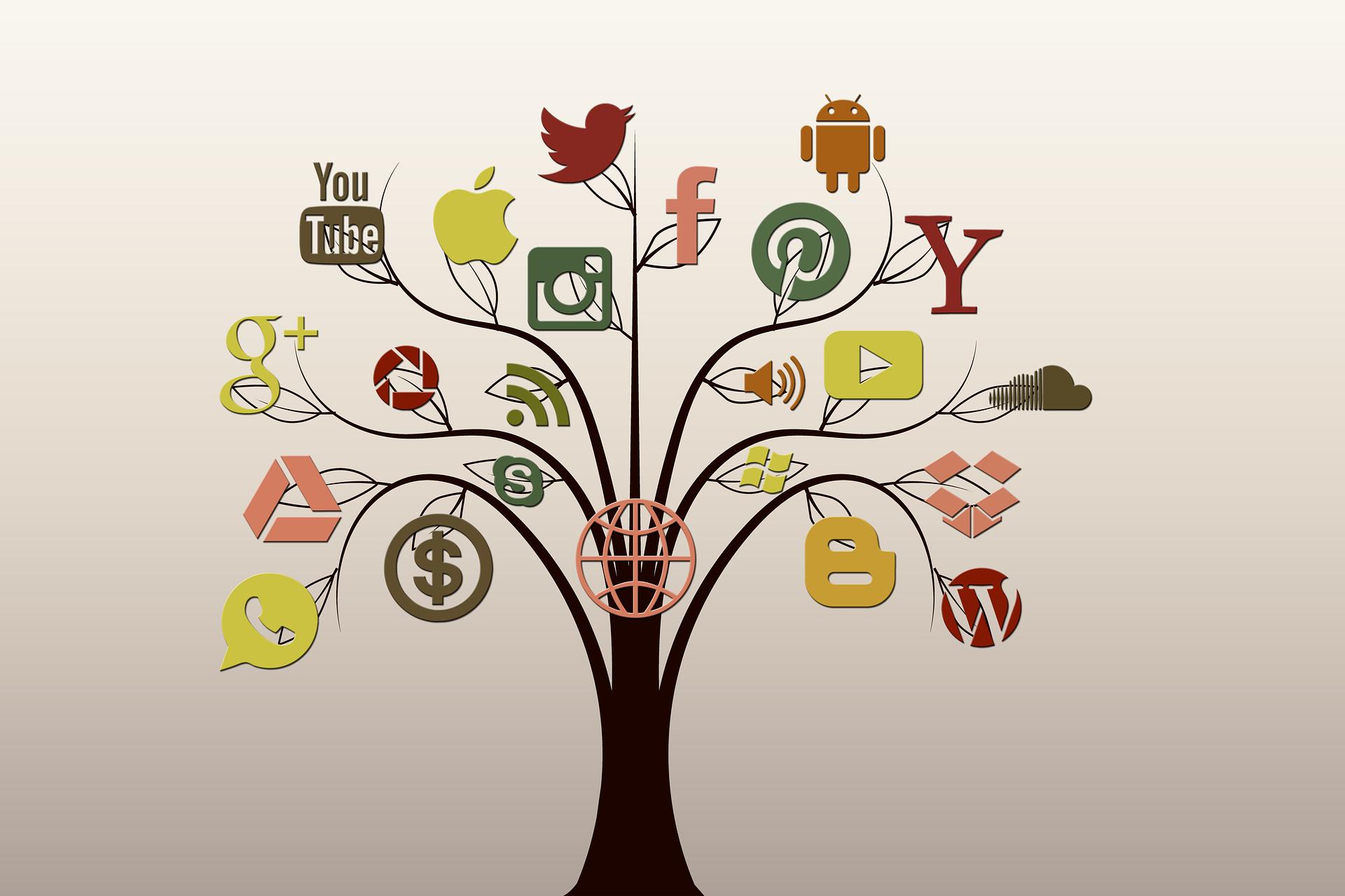 social-media-wordpress